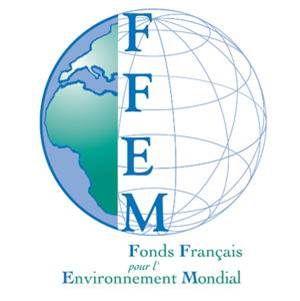 Cliente FFEM