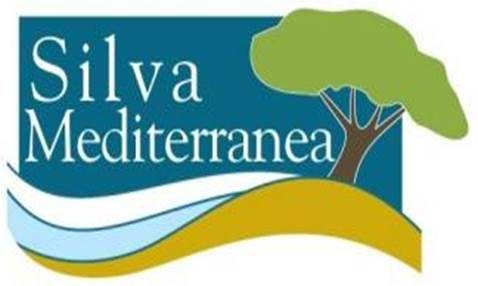 Cliente Silva Mediterranea