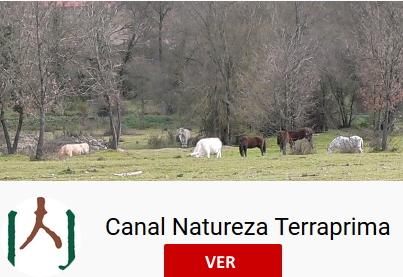 Canal Natureza Quinta da França
